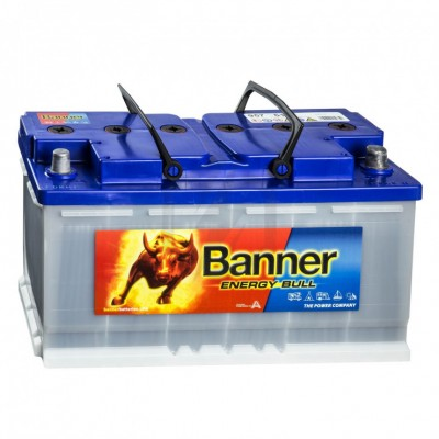 Batterie décharge lente Banner 95751 12v 100 ah
