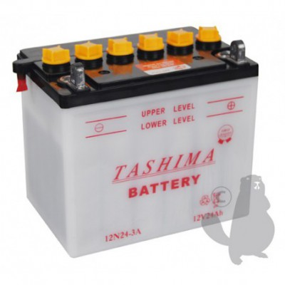BATTERIE 12N24.3A